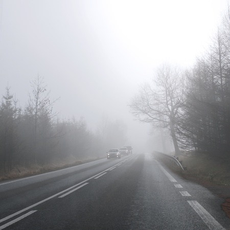 The cars at the road in the autumn mist photo