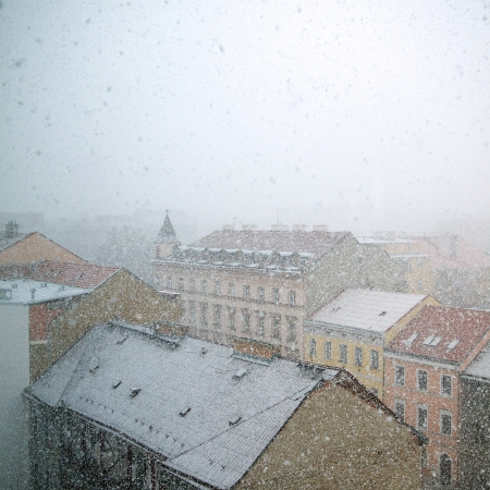 Heavy snowfall in the city at the beginning of winter photo