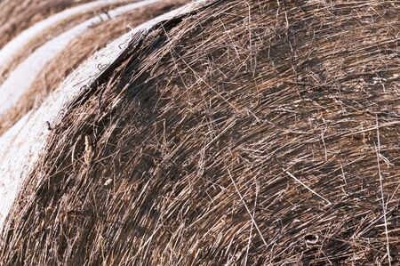 Close-up of the round bales of straw photo