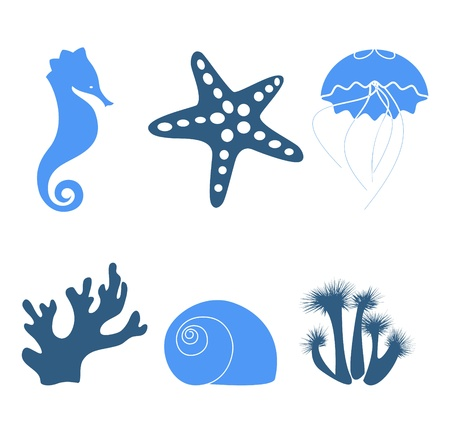 Sea objects & design elements isolated on white Vector