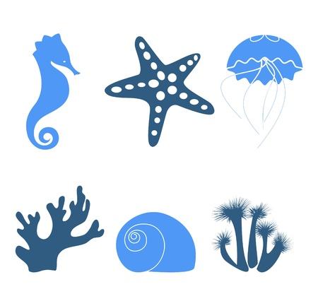 seestern: Sea Objekte und Design-Elemente isoliert auf wei� Illustration