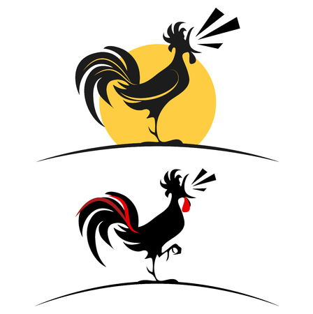 crowing: A rooster on the white background  Stock Photo