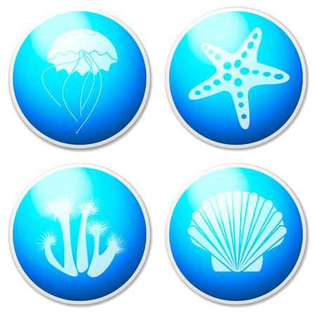 White sea objects   design elements  buttons   photo