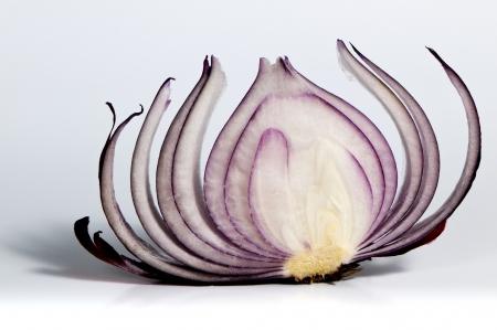 赤玉ねぎのスライスのショット 写真素材