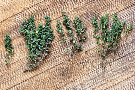 several: Several fresh green thyme sprigs on the wooden board