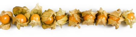 Several berries of physalis on a white background. Top view