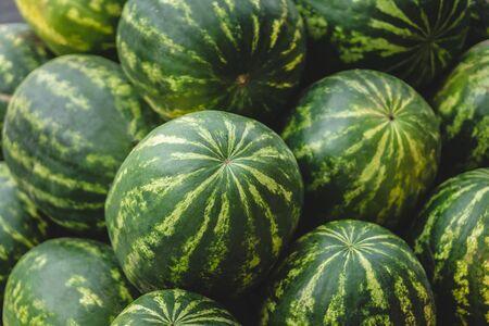 Many big sweet green watermelons background. Selective focus. Фото со стока