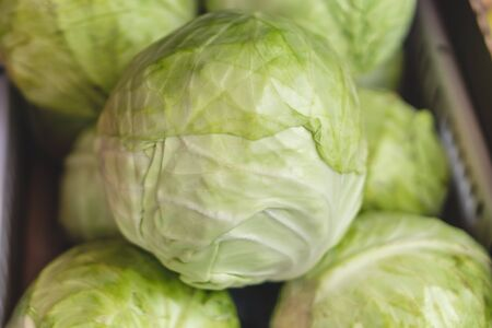 Group of green cabbages in a supermarket, Cabbage background. Selective focus Фото со стока
