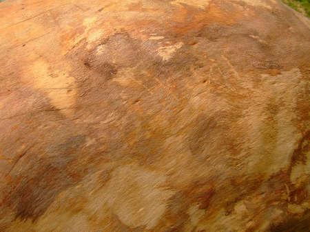 Holz-Textur  Lizenzfreie Bilder