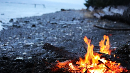 bonfire night: wood fire by the beach in evening