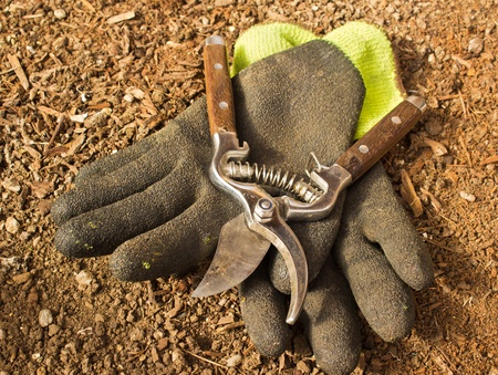 wood cutter: Gardening clippers and gloves against brown earth background Stock Photo