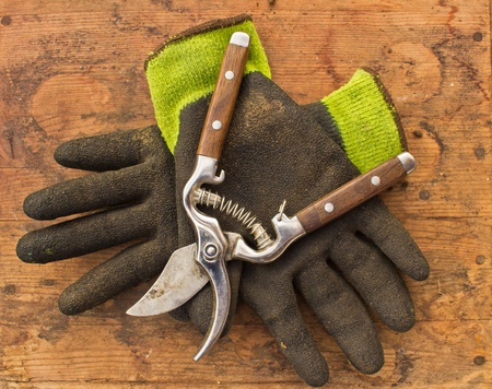 wood cutter: Gardening clippers and gloves against brown wood background Stock Photo