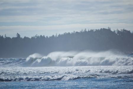 Wellen brechen an der Westküste im Nebel Standard-Bild - 24136708