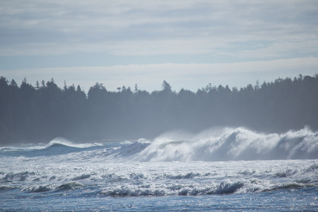 breaking: Waves breaking on west coast in the mist