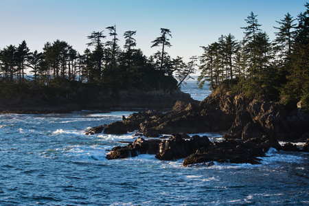 vancouver island: Waves break against rugged shore of west vancouver island