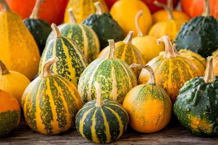 ripe organic colored pumpkins on an old wooden table photo