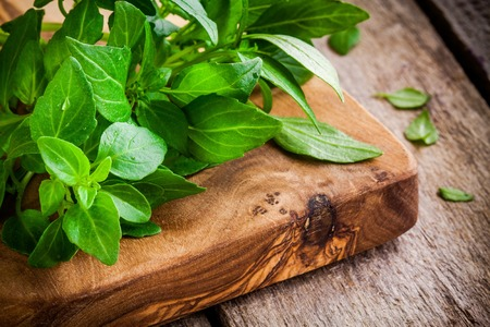 basil: bunch of fresh organic basil in olive cutting board closeup on rustic wooden background
