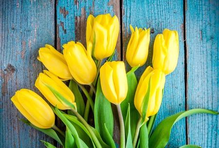 tulipan: bukiet żółtych tulipanów na niebieskim tle drewniane