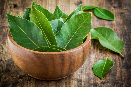Fresh bay leaves in a wooden bowl on a rustic wooden background