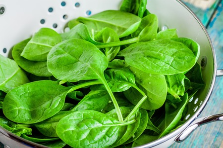 raw fresh spinach in a white colander closeup on a rustic wooden table