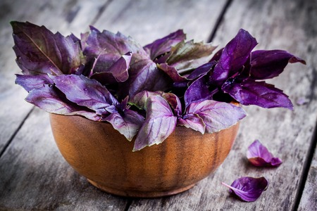 green and purple vegetables: beam of purple basil in the bowl  on the rustic wooden table Stock Photo
