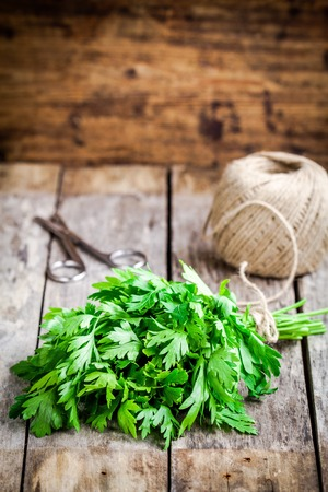 curly leafed: organic fresh bunch of parsley on a wooden rustic table
