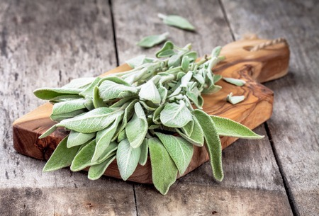 Fresh organic bundle of sage on a rustic wooden table