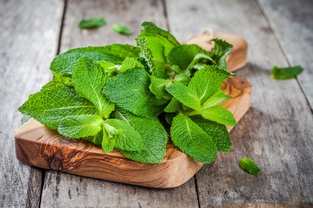 organic plants: organic fresh bunch of mint on wooden cutting board  on a rustic background