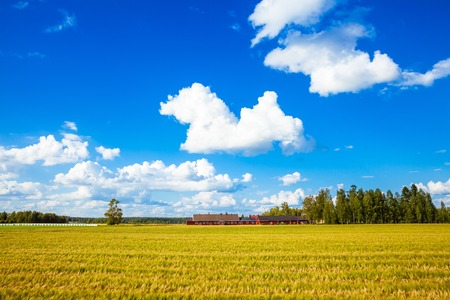 red farm in a field in rural Finland