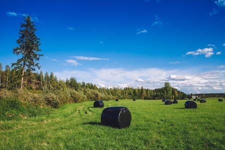 Beautiful countryside landscape. Round straw bales in black plastic in green field in rural Finland Banco de Imagens