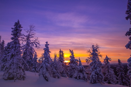 Forest covered with hoarfrost and snow in winter mountains - Sunset in Finland Lapland Stock Photo