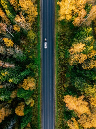 Road in the colored autumn forest aerial view 免版税图像