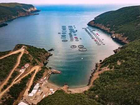 Salmon fish farm with floating cages in Greece. Aerial view Stock Photo
