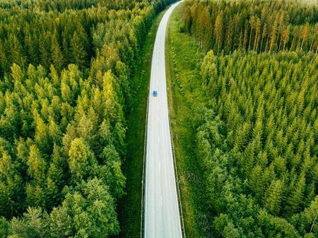Vogelperspektive von oben genanntem der Landstraße durch den grünen Sommerwald im Sommer Finnland. Drohnenfotografie