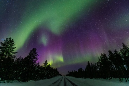 Beautiful purple and green Northern Lights (Aurora Borealis) in the night sky over winter Lapland landscape, Finland, Scandinavia