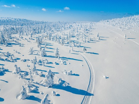 Aerial view of white winter forest with snow covered trees and rural road in Finland, Lapland Stok Fotoğraf