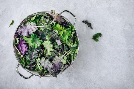 Grüne Babykohlblätter im weißen Sieb auf grauem Steinhintergrund. Zutat für gesunden vegetarischen oder veganen Smoothie, Salate oder Pestosauce