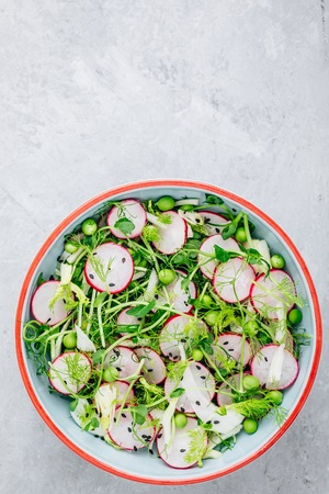 Fresh summer fennel salad with pea shoots and radishes. Top view