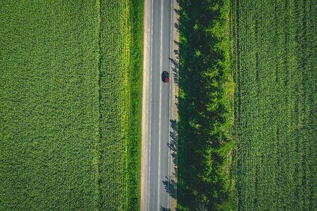 Bovenaanzicht vanuit de lucht van een landelijke asfaltweg door een groen maïsveld in de zomer