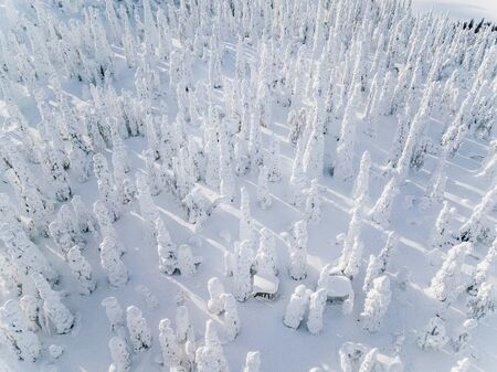 Aerial view of Snow Covered Winter forest landscape in Finland Lapland