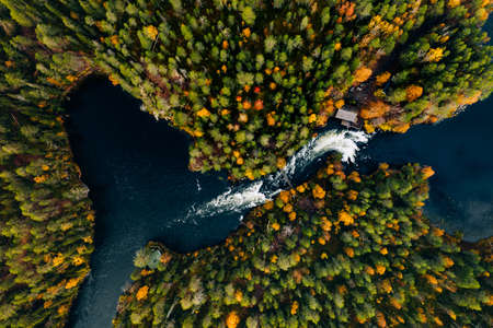 Aerial view of fast river in beautiful orange and red autumn forest. Oulanka National Park, Finland.