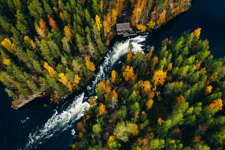 Aerial view of fast river with suspension foot bridge and wooden cabin in beautiful orange and red autumn forest. Oulanka National Park, Finland.