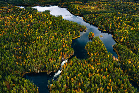 Aerial view of blue rivers and lakes in beautiful orange and red autumn forest. Oulanka National Park, Finland. Standard-Bild