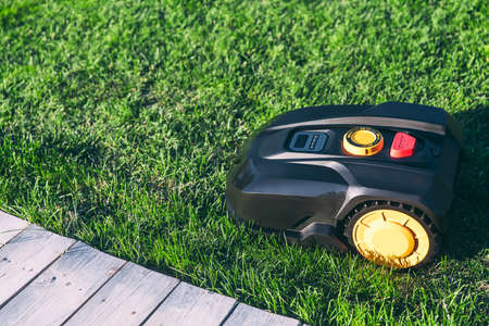 Robotic Lawn Mower cutting grass in the garden. Automatic robot lawnmower in modern garden on sunny day close-up.