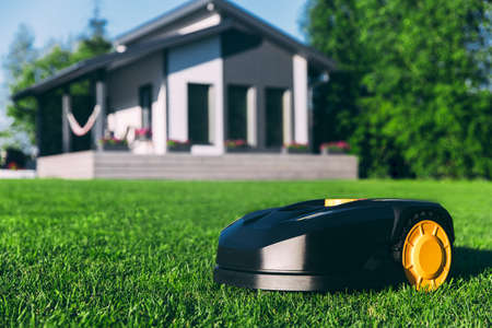 Robotic Lawn Mower cutting grass in the garden. Automatic robot lawnmower in modern garden on sunny day close-up. Imagens