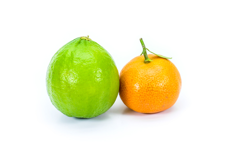 clementine fruit: Miniature corsican clementine and miniature green lemon isolated on white Stock Photo
