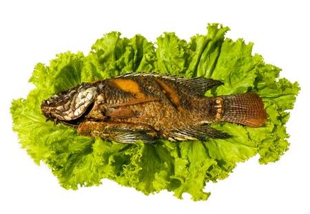 Tasty Fried Tilapia fish on green lettuce Stock Photo - 8575425