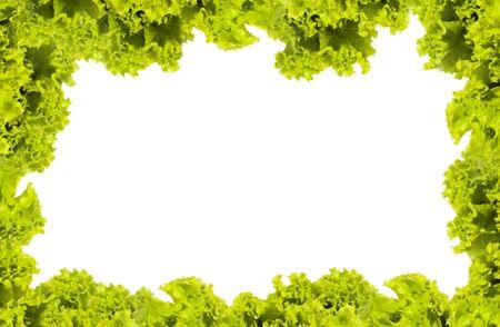 leafy: Fresh Green Salad frame