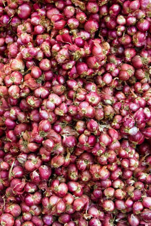Red onion in market as background