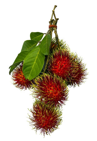 Rambutan with green leaf isolated on white photo